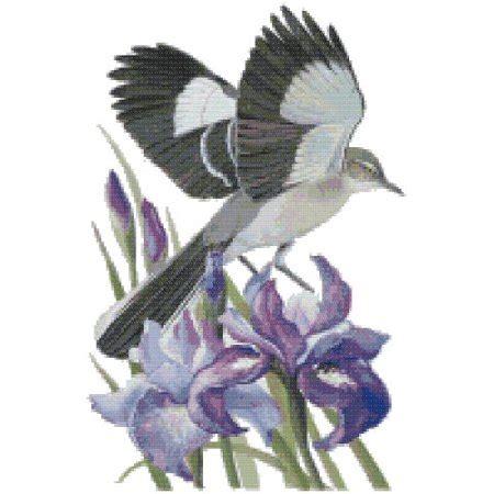tennessee state bird  flower northern mockingbird