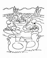 Farm Coloring Pages Adult Children Printable Contests Justcolor sketch template