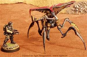 Arachnids, Big Bugs, Sst, Starship Troopers - Starship ...