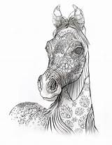 Coloring Horse Pages Adult Adults Animals Printable Horses Books Stallion Selahworks Colouring Sheets Arabian Selah Works Samples Animal Mindfullness Drawing sketch template