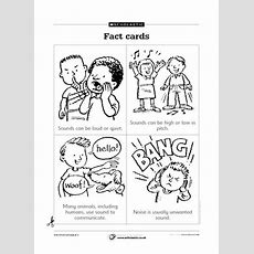 Sound And Hearing  All Worksheets  Free Primary Ks1 Teaching Resource Scholastic