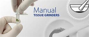 The Homogenizer Company Tissue Grinders