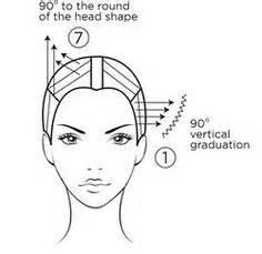 hair cutting diagrams