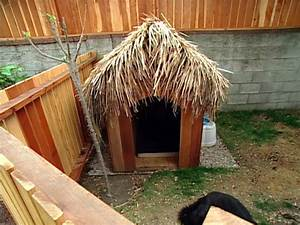 vacation landscapes diy With tiki dog house