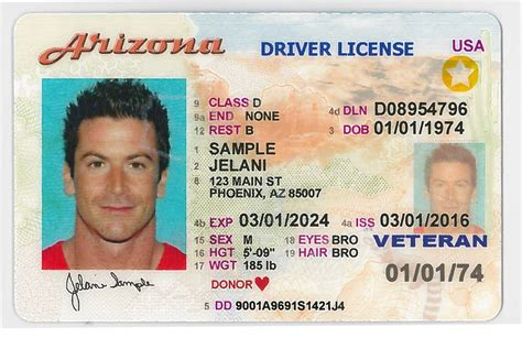 state driver licenses ids valid air travel verde