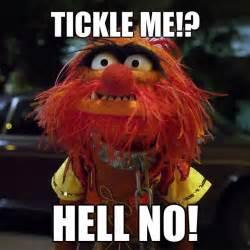 Meme Muppets - pin by dylon whyte on memes pinterest