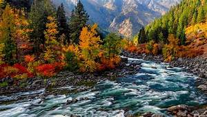 Wallpaper, Hd, Landscape, Autumn, Mountain, Yellow, And, Red, Leaves, On, Trees, River, Stones