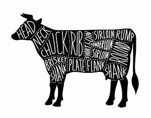 Butcher Shop  Beef Cuts  Vector Illustration Stock Vector