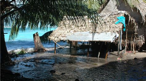 tuvalu that sinking feeling that sinking feeling climate change and forced migration