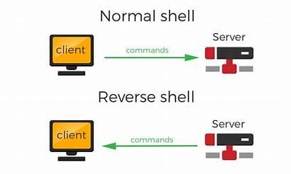 Reverse Shell Ssh Tcp Python Shells Hat