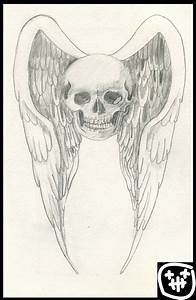 skull and wings by heely on DeviantArt