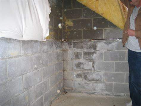 What Do Wet Or Damp Basement Walls Mean All Points Damp