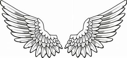 Wings Angel Drawing Report Abuse Pngkey Background
