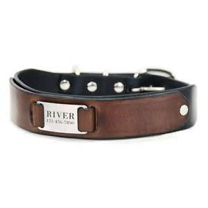 cat collar with name best 25 engraved collars ideas on