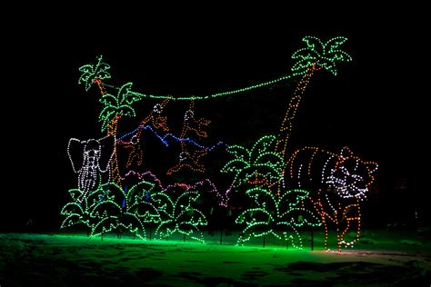 brew lights at zoo lights ornaments christopher martin photography