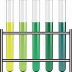 Test Tubes Holder Clipart Tube Vector Clip