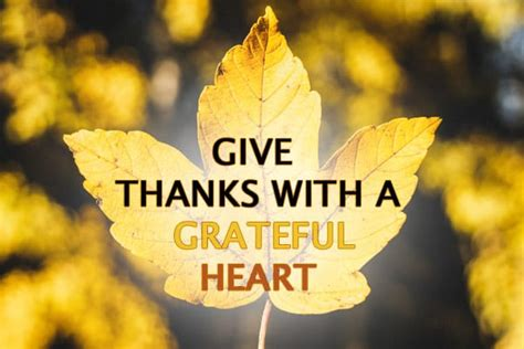 give    grateful heart fusion event staffing