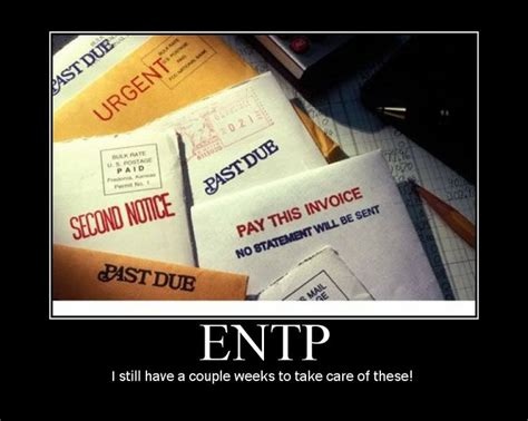 Entp Memes - 17 best images about entp on pinterest personality types i am and so true