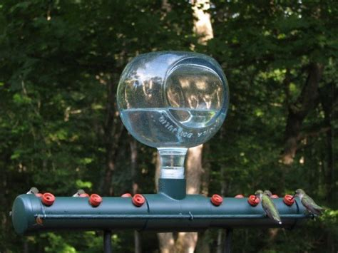 diy hummingbird feeder 14 diy hummingbird feeders that ll be the buzz around your