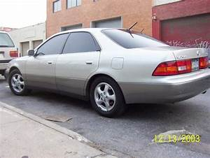 Accord 2nv 1998 Lexus Es Specs  Photos  Modification Info