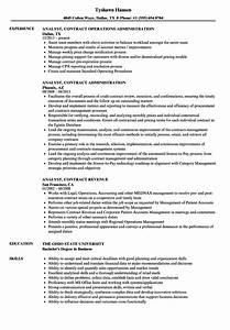 charming erp implementation resume sample ideas resume With erp implementation resume sample