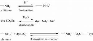Mechanism Of Anionic Dye Adsorption By Chitosan Under