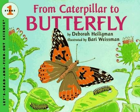 monarch butterfly craft for no time for flash cards 157 | From Cateroillar to Butterfly