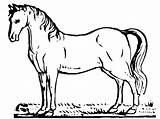 Horse Coloring Printable Bestappsforkids sketch template