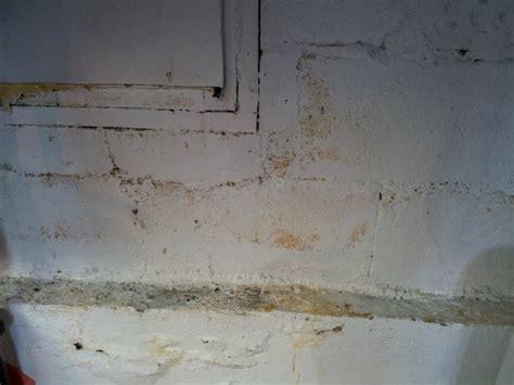 yellow substance  block basement walls doityourself