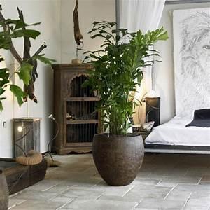 Jardiniere Interieur : jardini re d 39 int rieur croco design jardinchic ~ Melissatoandfro.com Idées de Décoration