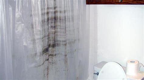 nettoyer rideau de plastique