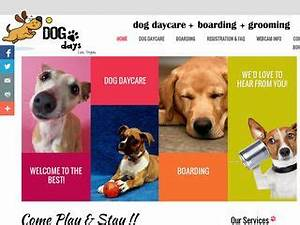 Dog boarding near 89074 nevada nv boardingcom for Dog days las vegas