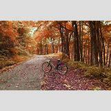 Nostalgic Wallpapers Backgrounds   1280 x 800 jpeg 470kB