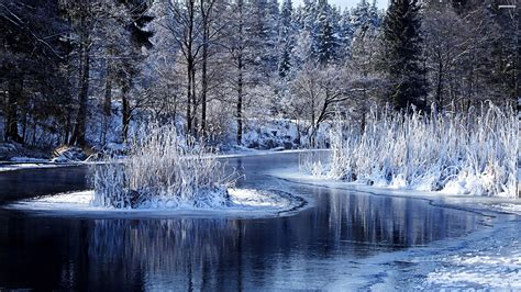 Top Winter Picture by Winter Pictures Images Graphics For Whatsapp