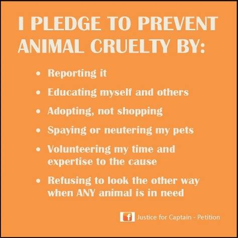images  april prevention  cruelty