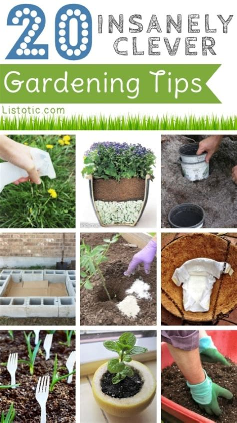 20 Insanely Clever Gardening Tips  Homestead & Survival