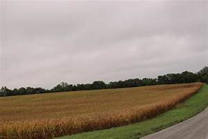 Report Extreme Heat Will Test Agriculture in Michigan ...