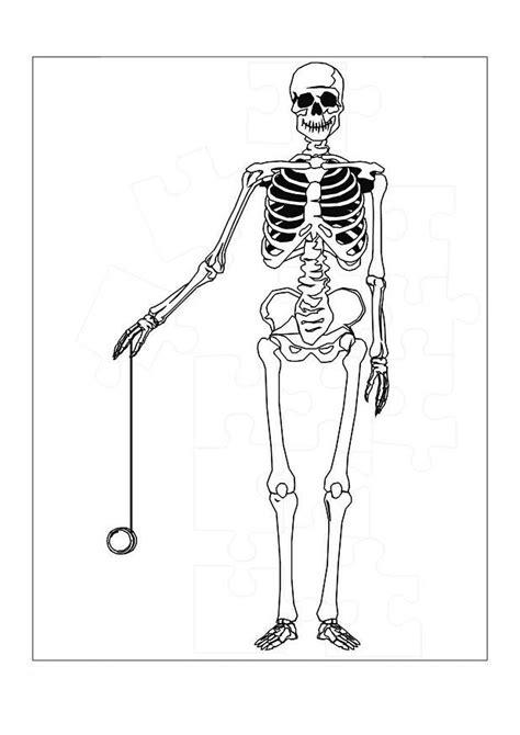 printable skeleton coloring pages  kids