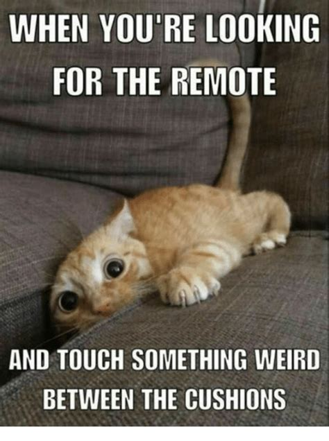 Funny Weird Memes - when you re looking for the remote and touch something weird between the cushions meme on sizzle