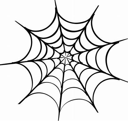Svg Icon Spider Web Onlinewebfonts