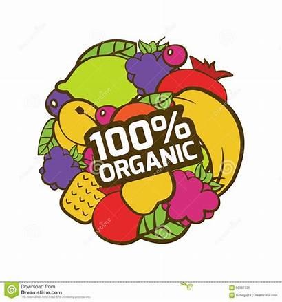 Organic Clip Circle Awesome Shape Fruits Natural