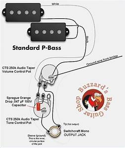 Fender P Bass Wiring Diagram  U2013 Moesappaloosas Com