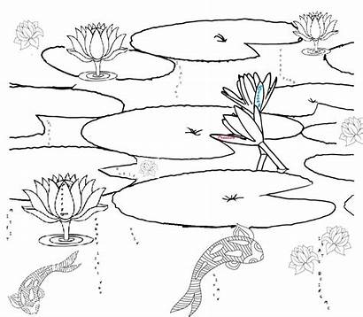 Pond Coloring Pages Habitat Printable Realistic Drawing