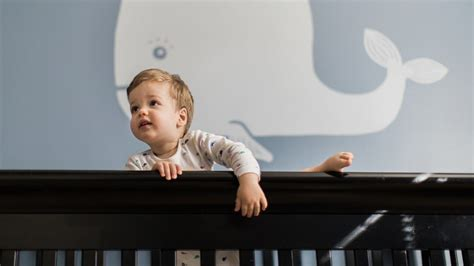 baby climbing out of crib is your toddler climbing out of his crib