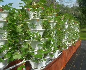 Vertikal Garten System : texas farm goes vertical to net tall yields agrilife ~ Sanjose-hotels-ca.com Haus und Dekorationen