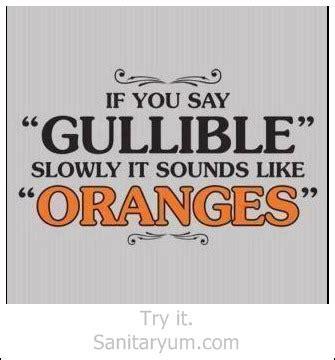 hilarious clean quotes quotesgram