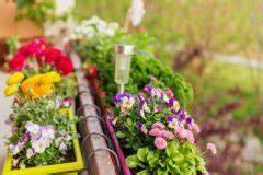 Dauerbepflanzung Für Balkonkästen : balkonkasten im schatten diese pflanzen gedeihen ohne sonne ~ Frokenaadalensverden.com Haus und Dekorationen