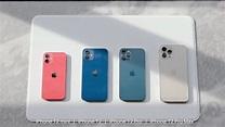 Apple vende più iPhone 12 Pro Max di iPhone 12 mini - iPhone Italia