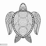 Coloring Turtle Pages Adult Sea Drawn Hand Abstract Vector Animal Boho Illustration Tribal Tattoo sketch template