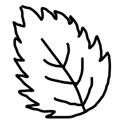 Hand drawn leaf outline Transparent PNG & SVG vector